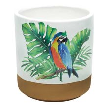 Vaso De Cerâmica Decorativo Parrot Colorido 16,5x17,5cm